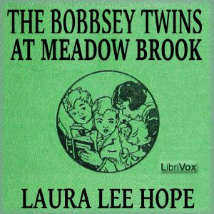 Bobbsey Twins at Meadow Brook