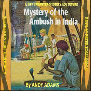 Mystery of the Ambush in India