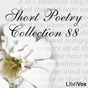 Short Poetry Collection 088