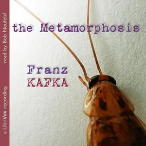 Metamorphosis (version 3)