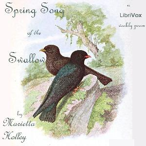 Spring Song of the Swallow